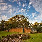 Saltwater River Coal Mine, Tasmania #7 by Chris Cobern