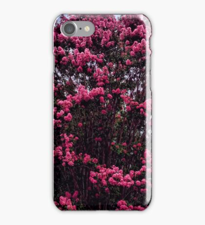 Pink Crape Myrtle iPhone Case/Skin