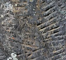 Old Gravestone 2 by marybedy