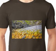 Rockscape of An Port - County Donegal, Ireland Unisex T-Shirt