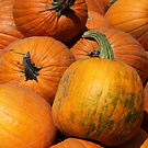 Pumpkin Pile 1 by marybedy