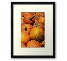 Pumpkin Pile 1 Framed Print