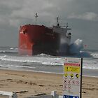 Pasha Bulker and sign, Newcastle, Australia by muz2142
