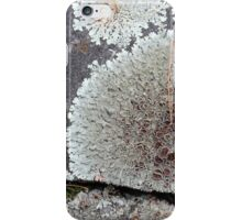 Stone Fence with Lichen iPhone Case/Skin