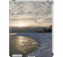 Cold, Moody and Fabulous - a Winter Morning on the Lake Shore iPad Case/Skin