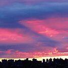 New York City Colour Blocking by Alberto  DeJesus