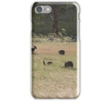 And now there are four! Western Greys, 'Arilka' Adelaide Hills. S.A. iPhone Case/Skin