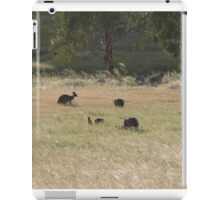And now there are four! Western Greys, 'Arilka' Adelaide Hills. S.A. iPad Case/Skin