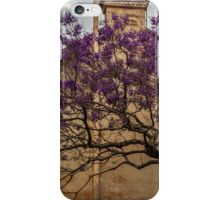 Jacaranda tree iPhone Case/Skin