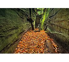 Hidden Passageway Photographic Print