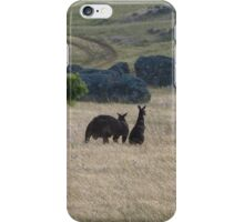 Big Dad & Floe in the paddock, 'Arilka' Adelaide Hills. S.A. iPhone Case/Skin