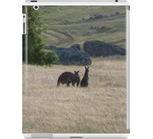 Big Dad & Floe in the paddock, 'Arilka' Adelaide Hills. S.A. iPad Case/Skin