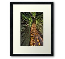 Narrow Crevice Framed Print