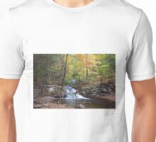 Fall Leaves Meet Waters Meet Point Unisex T-Shirt