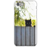 The Rare stray cat iPhone Case/Skin