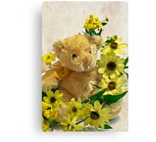 Teddy Bear - Yellow Toto Lemon Rudbeckia Canvas Print