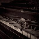 Playing slow by EbyArts