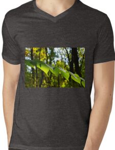 Selective focus on the branch of a tree with large green leaves Mens V-Neck T-Shirt