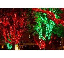Red and Green Tree Lights Photographic Print
