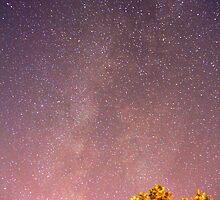 Meteors near the Milky Way II by Augustina Trejo