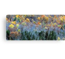 Quilt of Many Colors Canvas Print