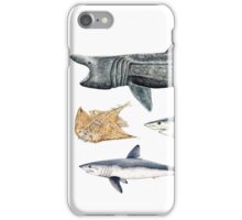 Shark diversity iPhone Case/Skin