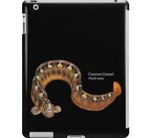 Crescent Gunnel iPad Case/Skin