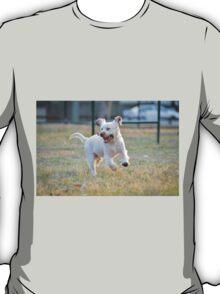 Frolicking! T-Shirt