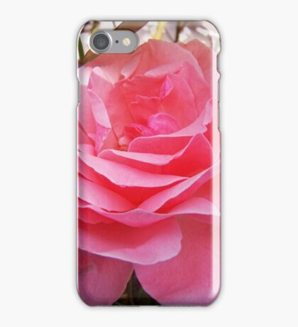 Summer Rose iPhone Case/Skin