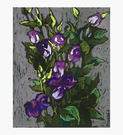 Violet flowers in a bunch Photographic Print