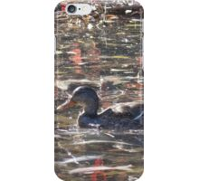 Duck Swimming in Salmon-Filled Stream iPhone Case/Skin