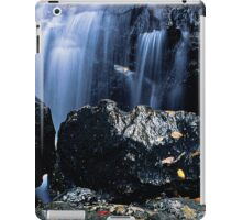 Earth and Water Spirits iPad Case/Skin