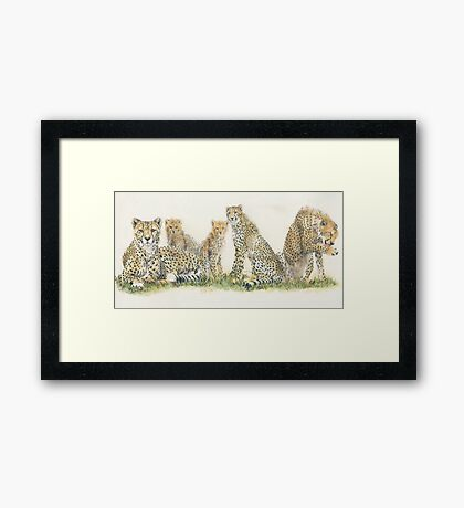 African Cheetah Wrap Framed Print