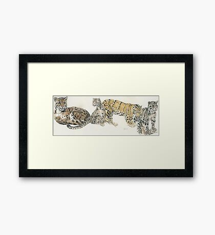 Clouded Leopard Wrap Framed Print