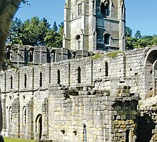 FOUNTAINS ABBEY: Fine-Art Images by Priscilla Turner by Priscilla Turner