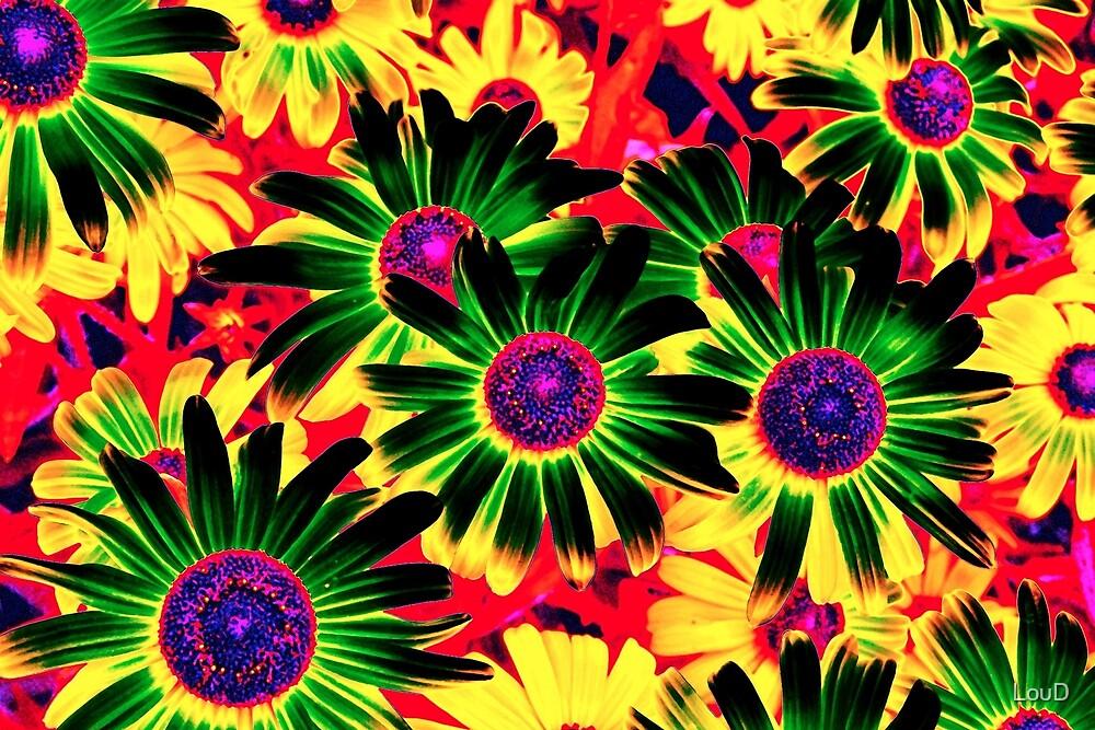Daisy Fun - From My Mother's Secret Garden by LouD