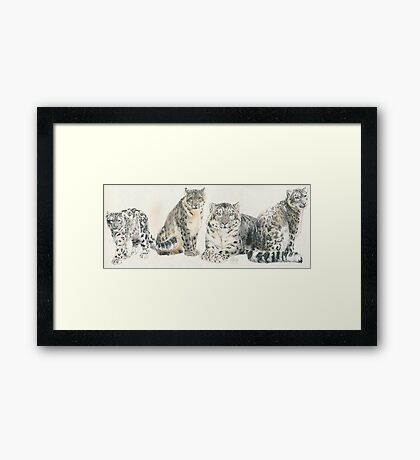 Snow Leopard Wrap Framed Print