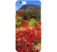 AUTUMN, BLUE RIDGE PARKWAY iPhone Case/Skin
