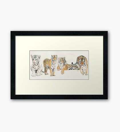 Tiger Wrap Framed Print