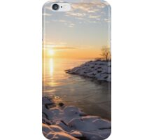 Brilliant, Bright and Cold - a Winter Morning on the Lake Shore iPhone Case/Skin