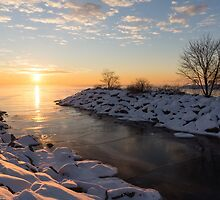 Brilliant, Bright and Cold - a Winter Morning on the Lake Shore by Georgia Mizuleva