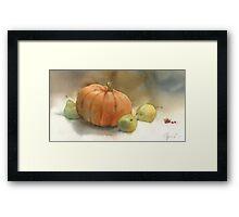 Stil-life with pumpkin Framed Print