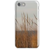 Dune Grass by the Sea iPhone Case/Skin