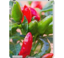 red chili iPad Case/Skin