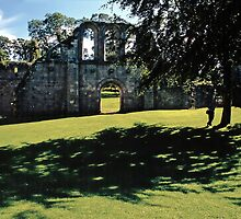 Fountains Abbey14 by Priscilla Turner