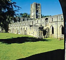 Fountains Abbey15 by Priscilla Turner