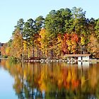 Autumn in Umstead State Park by Barbny
