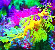 seahorse coral reef animal abstract by druidwolfart