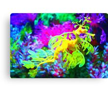seahorse coral reef animal abstract Canvas Print