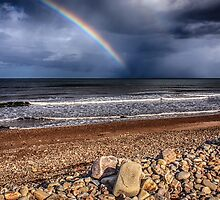 Rainbow's End by Douglas McMann